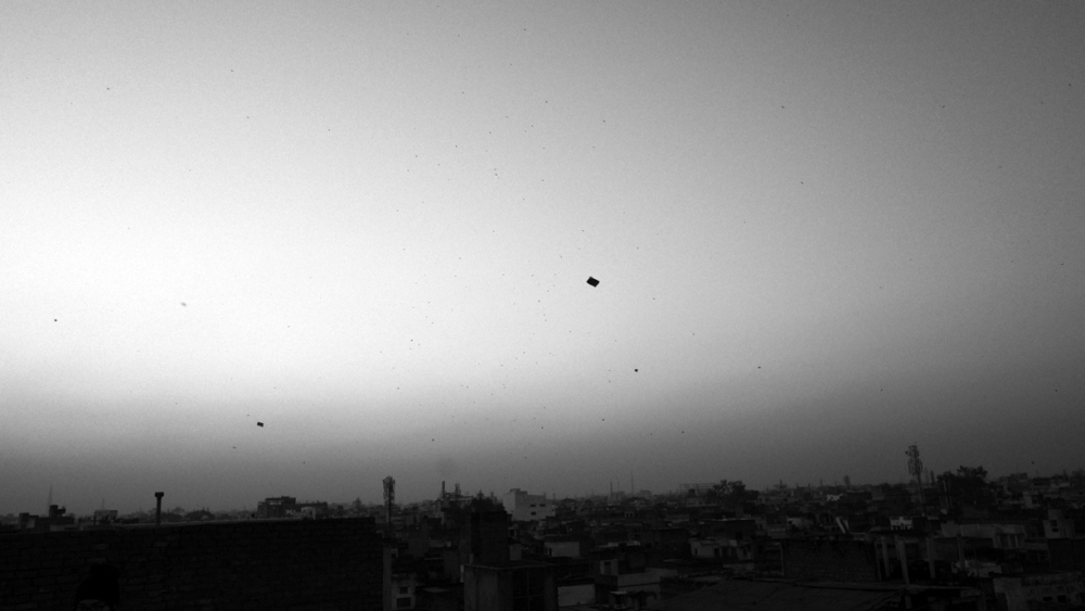 20130217.IND.VRI.JO©.0046