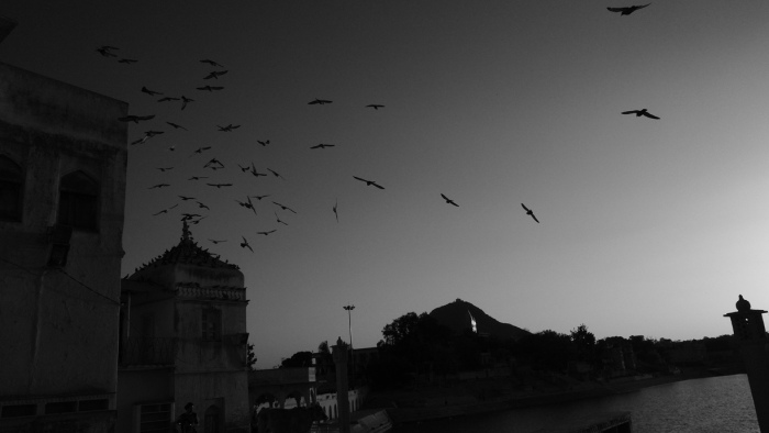 20130324.IND.PSH.JO©.0063