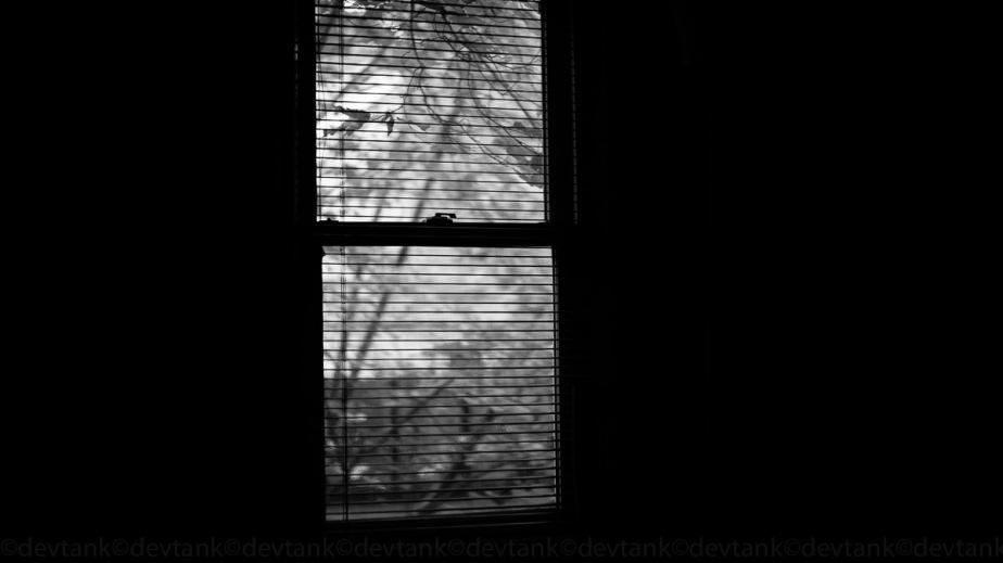 20141029.USA.JO©.JRNL.00012